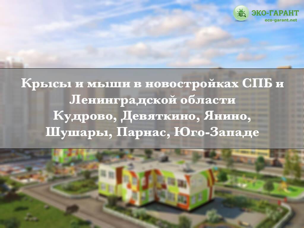 Крысы и мыши в новостройках СПБ и Лен области.