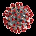 Обработка от вирусов