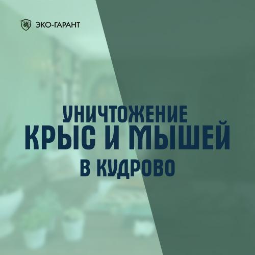 Уничтожение крыс и мышей в Кудрово