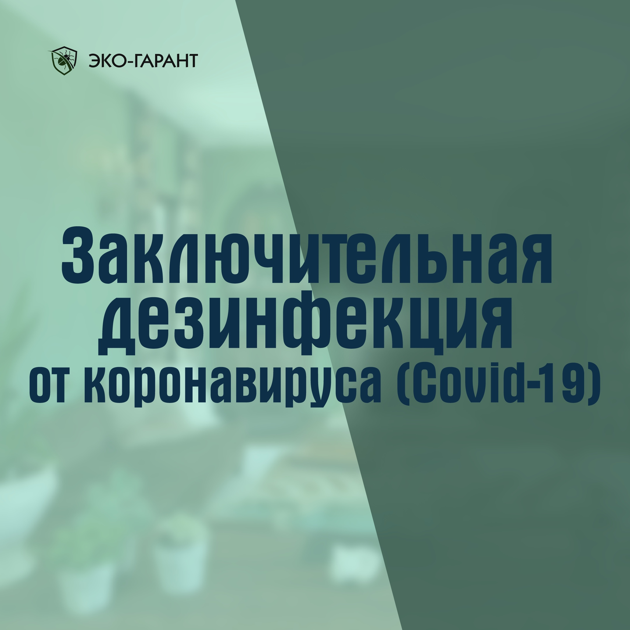 Заключительная дезинфекция помещений от COVID-19